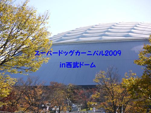 P1060804.jpg