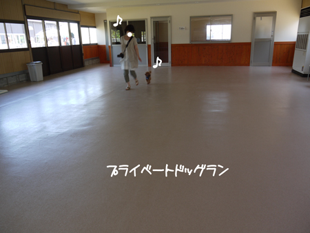 P1110494.jpg